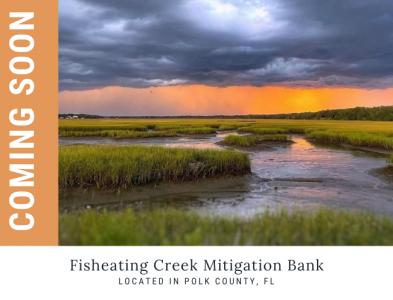 Fisheating Creek Mitigation Bank