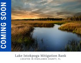 Lake Istokpoga Mitigation Bank