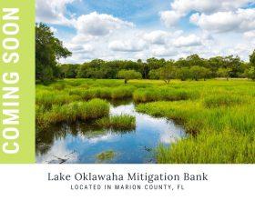 Lake Oklawaha Mitigation Bank